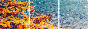 F2U|Decor|Autumn Landscape #5 by Mairu-Doggy