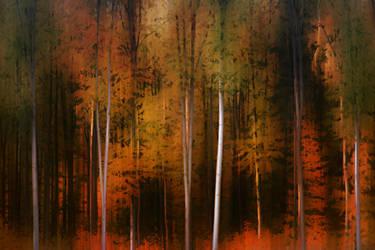 Autumn forest edge by PhotoartBK