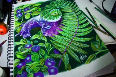 blueberry snail by NikaSamarina