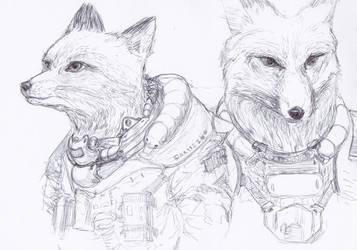 space fox by CZUBU