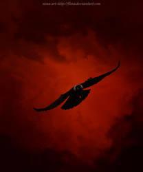 Crow II by flina