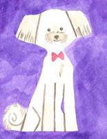 Ollie card by warpywoof