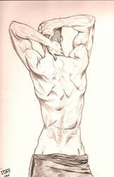 Male Back Sketch by justcallmefaye