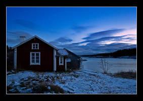 Winter light by AnteAlien