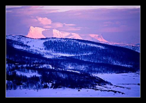 Winter by AnteAlien