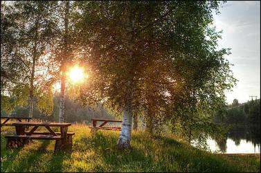 Swedish summernight by AnteAlien
