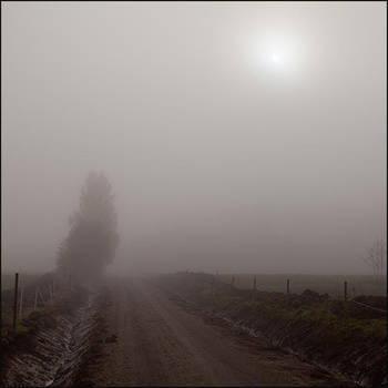 Misty road by AnteAlien