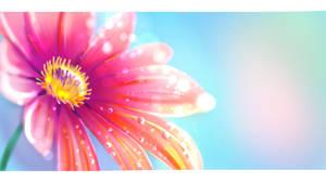 MACRO SKETCHING: FLOWER PETALS ( #01 ) by MintyCoffee