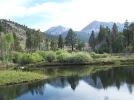 Pond by tkrain-stock