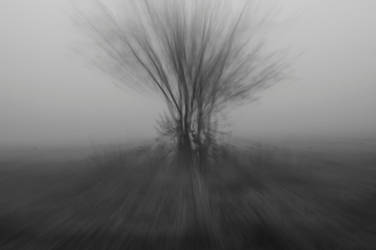 FSH by alechanted