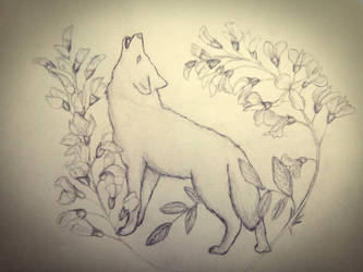 Wolf In The Flowers Of Acacia by Citromiel