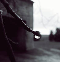 +.Drop.+ by MateuszPisarski