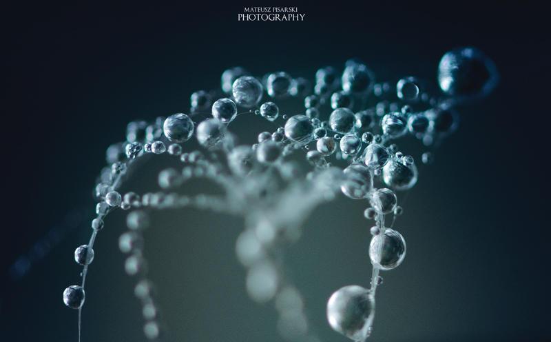 Tree of droplets. by MateuszPisarski
