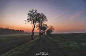 misty walk by MateuszPisarski