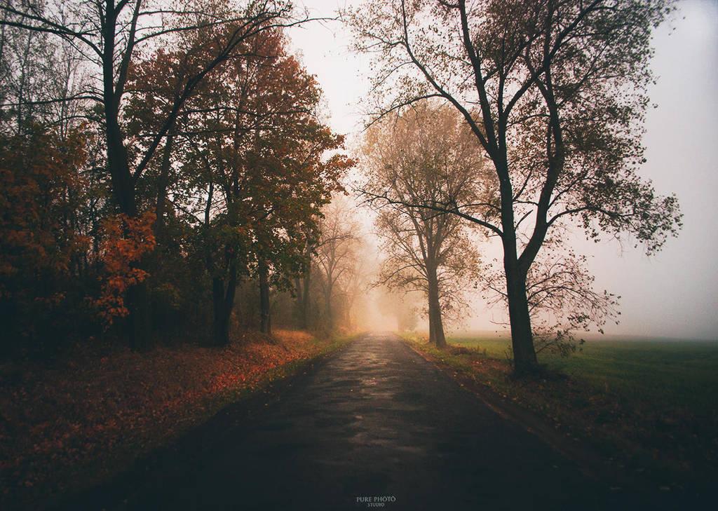 Autumn beauty. by MateuszPisarski