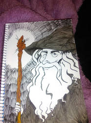 gandalf by leannepixie