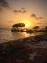 Birds beach at sunset by BriGht-liGht-NSH