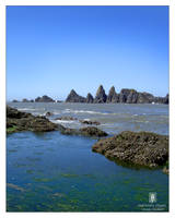 Seal Rock, Or. by GoaliGrlTilDeath