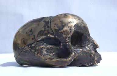Baby skull in Bronze by airbournevirus