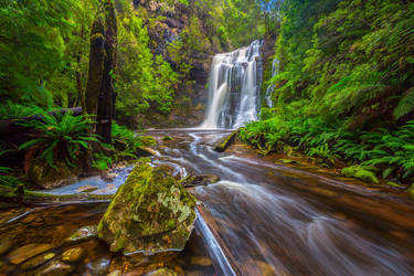 Tarkine Falls by paulmp