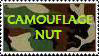 CAMOUFLAGE NUT stamp by charryblossom