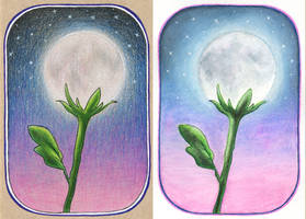 Arteza Woodless Watercolor Pencil Test by MysticSparkleWings