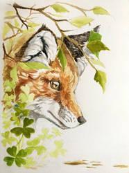 Brave Little Fox by Shwonky