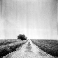 towards the unknown by kuru93