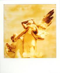 angels fall by kuru93