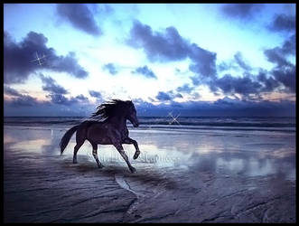 Run free by SpiritOfMadness