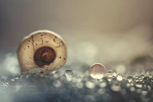 :: Emptyness :: by Liek