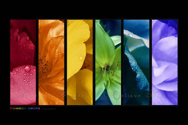 :: Rainbow drops :: by Liek