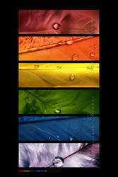 :: Rainbow drops III :: by Liek