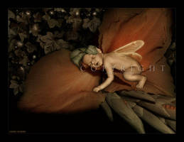 :: Sweet dreams :: by Liek