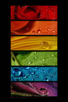 :: Rainbow drops '' :: by Liek