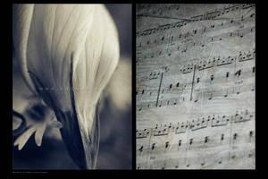 :: Ballad of the dead :: by Liek