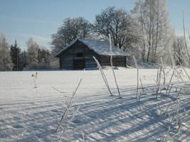 winter4 by Fune-Stock