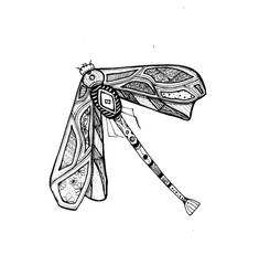 Fly away by Betagalactosidase