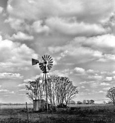 Texas Rolling Hills VIII MF by SteveMcClelland