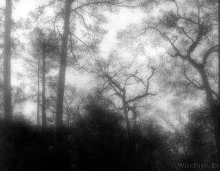 Dreamscape-II by SteveMcClelland