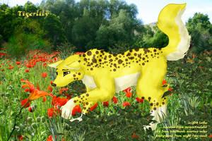 Tiger Lily CIS by world-of-zekira