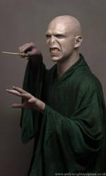 Voldemort by artyandy