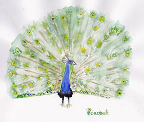 Peacock by Glorfindelle
