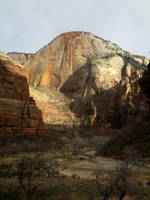 Surprize Stock: Zion Canyon by SenshiStock