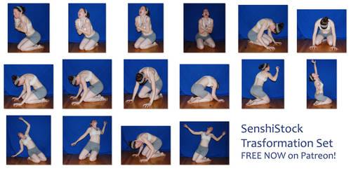 Transformation Set FREE Now on Patreon! by SenshiStock