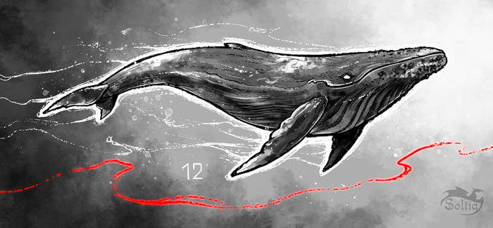 Inktober 12 - WHALE by Soltia