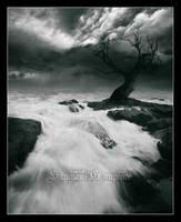 Ghost Tree by StygianDeath