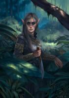 Elf Warrioress by davidkeen