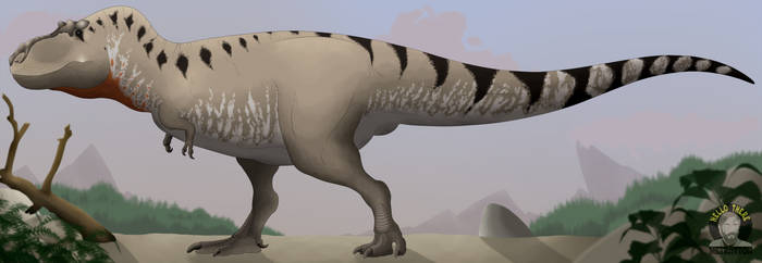 Tyrannosaurus rex by Metratton