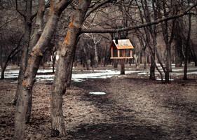 bird feeder by AlyonaMyalova